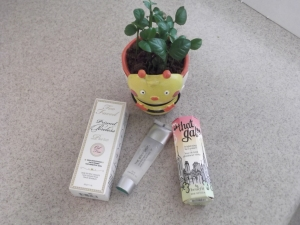 my 3 on rotation face primers - and yep my little lemon plant pot, to give a little umph to the photo, humor me!!